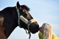 Hevonen ja tyttö kasvokkain lähekkäin